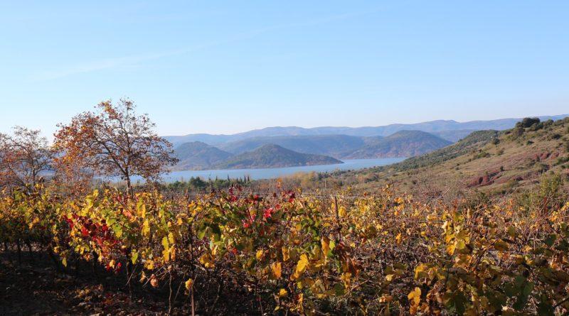 Un paysage du département de l'Hérault