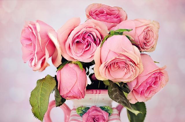 soirée romantique avec des roses