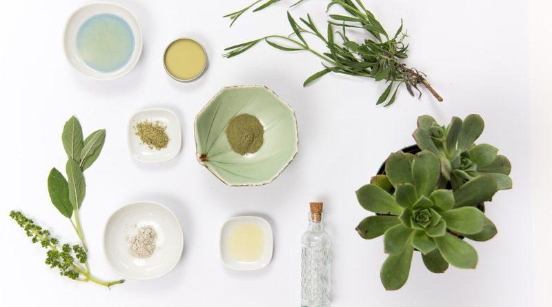 plantes médicinales et contre indication