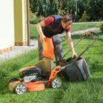 Nos conseils pour planter et entretenir sa pelouse
