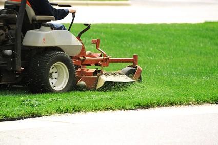 nos conseils pour planter et entretenir sa pelouse la caponni re. Black Bedroom Furniture Sets. Home Design Ideas