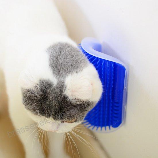 Les peignes pour chat