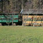 Vacances à la ferme: pour un séjour plein d'authenticité