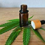 Cannabis légal : peut-on acheter du CBD en ligne ?