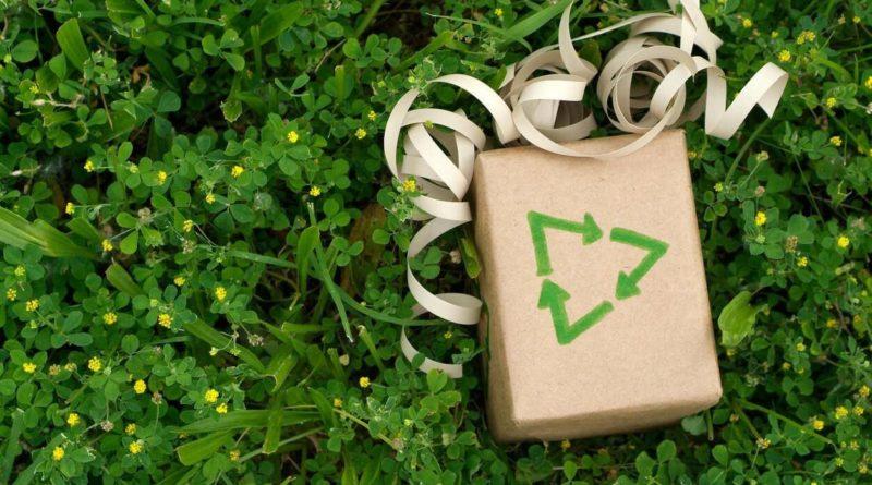 cadeau noel ecolo