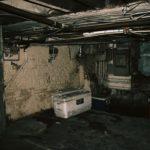 Cave trop humide : comment éviter les moisissures