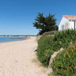 La Vendée est-elle un bon terrain pour un investissement immobilier ?
