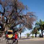 Majunga, région à forte potentialité touristique