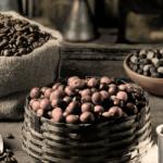 Tout savoir sur le café Caracoli du Brésil